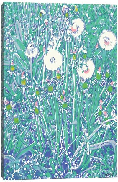 Dandelions In A Field Canvas Art Print