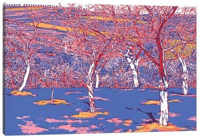 Orchard Canvas Art Print