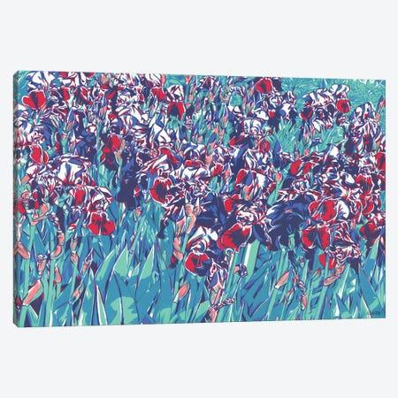Sunlit Iris Flowers Canvas Print #VTK176} by Vitali Komarov Canvas Print