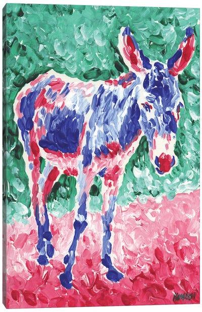 Colorful Donkey Canvas Art Print