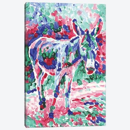 Baby Donkey Canvas Print #VTK186} by Vitali Komarov Canvas Artwork