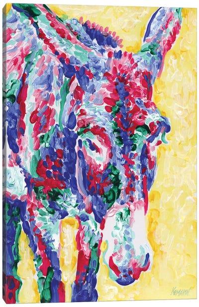 Sunlit Donkey Canvas Art Print