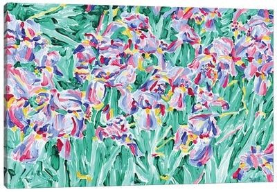 Iris Wildflowers Canvas Art Print