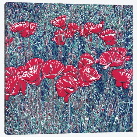 Red Poppy Field Canvas Print #VTK207} by Vitali Komarov Art Print