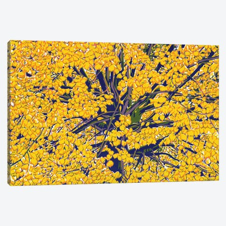 Autumn Tree Canvas Print #VTK22} by Vitali Komarov Canvas Art