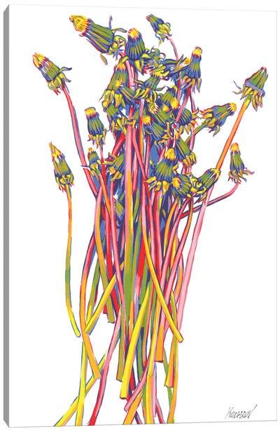 Dandelion Bouquet Canvas Art Print