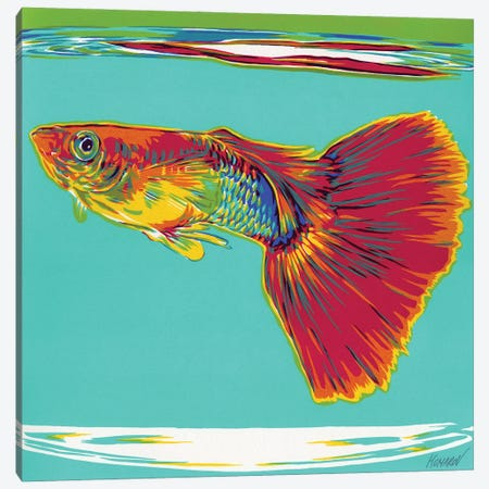 Goldfish Canvas Print #VTK23} by Vitali Komarov Canvas Wall Art