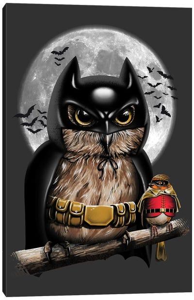Knight Owl Canvas Art Print