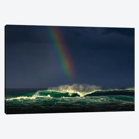 Divine Wave Canvas Print #VVA2} by Verne Varona Art Print