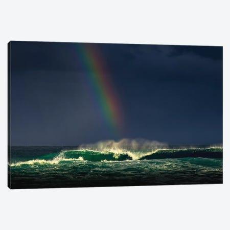 Divine Wave Canvas Print #VVA2} by Verne Varona Art Print