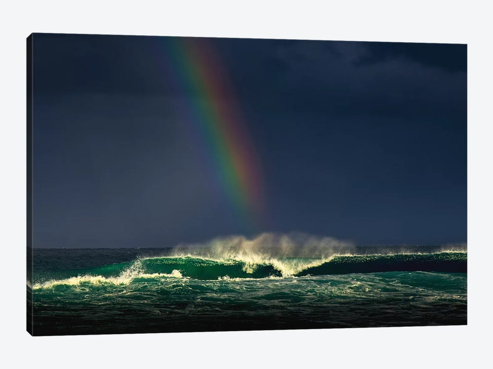 Divine Wave by Verne Varona 1-piece Canvas Art Print