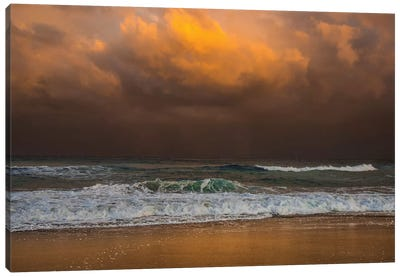 Shoreline Gold Canvas Art Print