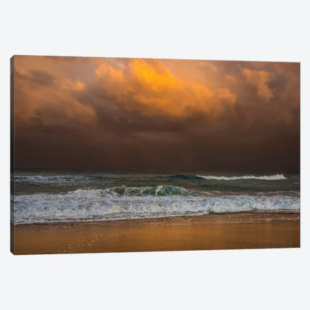 Shoreline Gold Canvas Print #VVA5} by Verne Varona Canvas Artwork