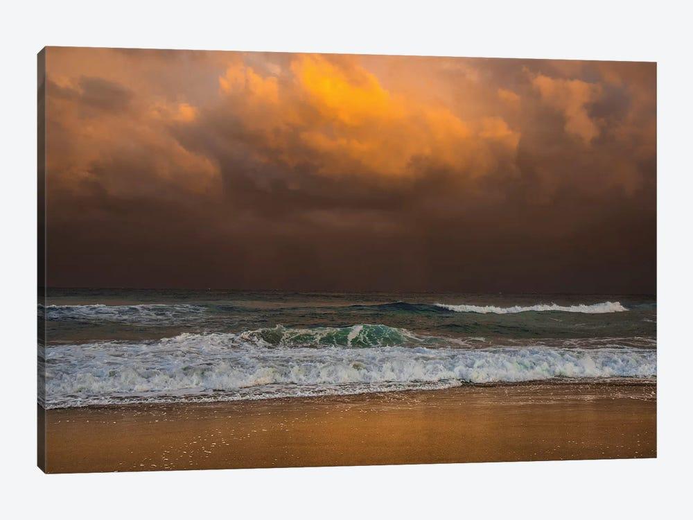 Shoreline Gold by Verne Varona 1-piece Canvas Art