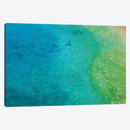 Solo Swim Canvas Print #VVA6} by Verne Varona Canvas Art