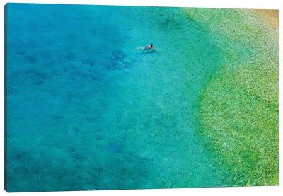 Solo Swim Canvas Art Print