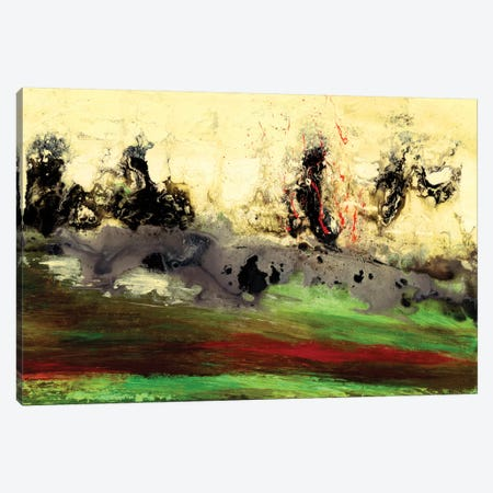 Enigma Canvas Print #VWO5} by Vinn Wong Canvas Art Print