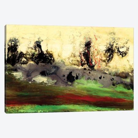 Enigma Canvas Print #VWO5} by Vinn Wong Canvas Art Print