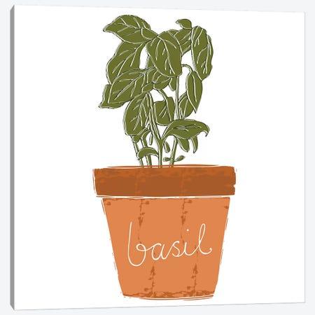 Basil Canvas Print #VYO10} by Vicky Yorke Canvas Wall Art
