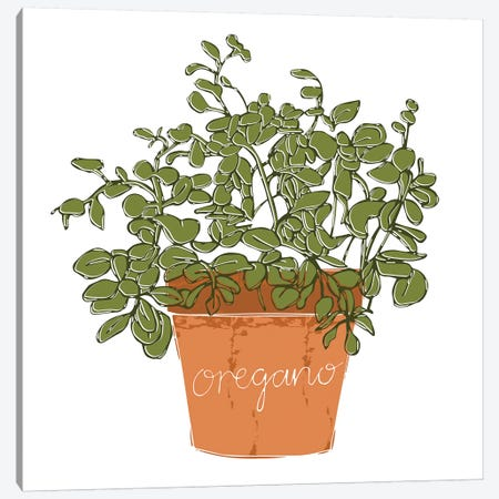 Oregano Canvas Print #VYO63} by Vicky Yorke Canvas Print