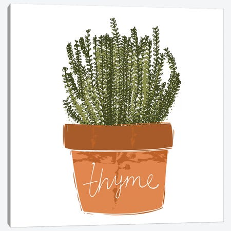 Thyme Canvas Print #VYO79} by Vicky Yorke Canvas Wall Art