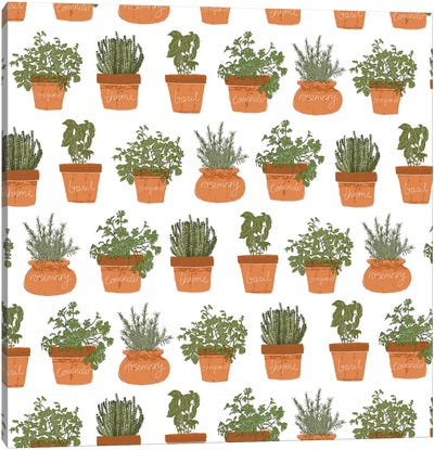 Potted Herbs Pattern Canvas Art Print