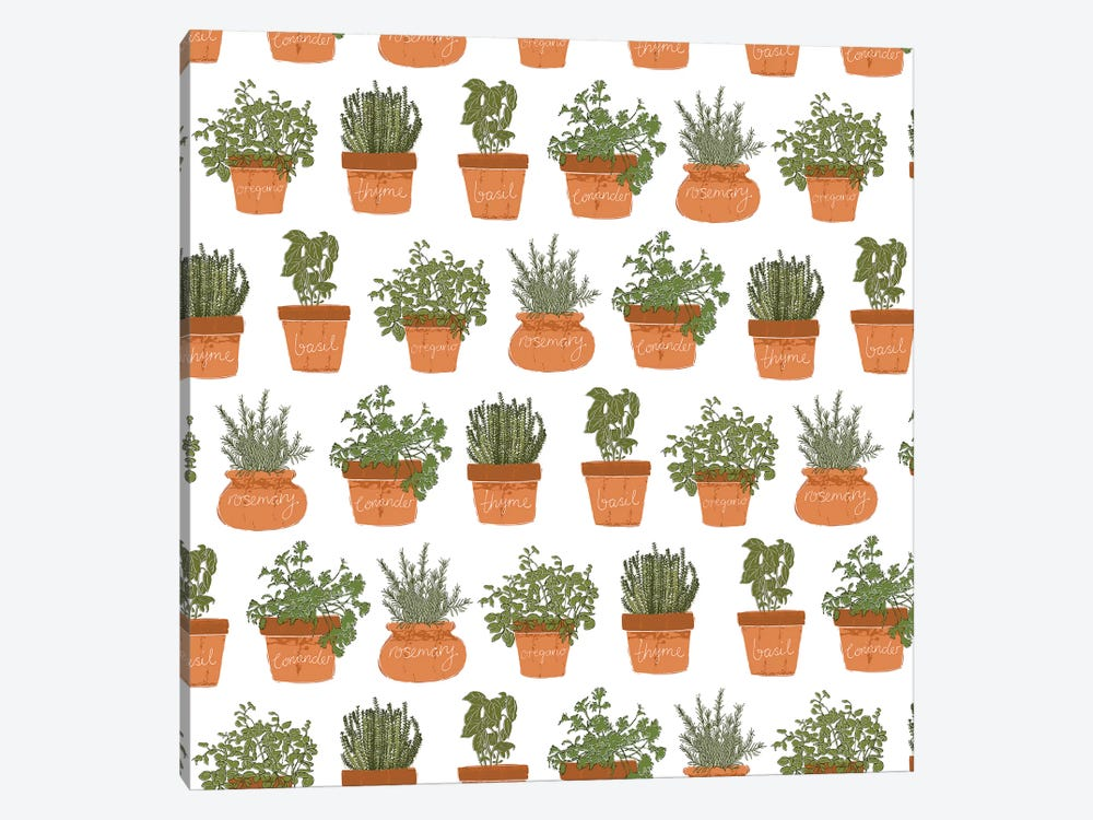 Potted Herbs Pattern by Vicky Yorke 1-piece Canvas Art Print