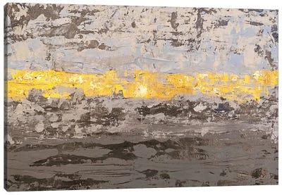 Gray Texture Canvas Art Print