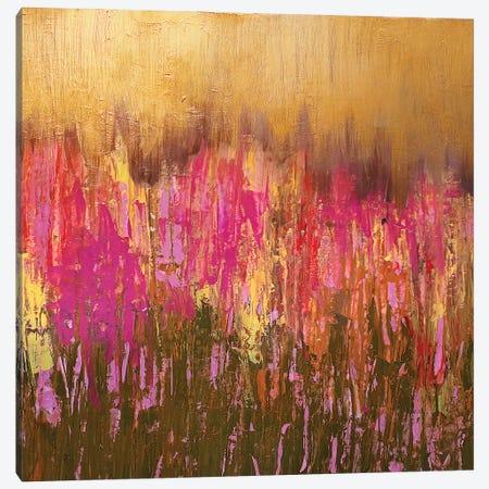 Sunset Field. Square. Canvas Print #VZH8} by Vera Zhukova Canvas Artwork