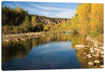 Fall Colored Trees Along Riverbank, Sierra Ancha Wilderness, Arizona Canvas Art Print
