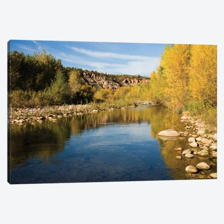 Fall Colored Trees Along Riverbank, Sierra Ancha Wilderness, Arizona Canvas Print #VZO8} by Tom Vezo Canvas Print