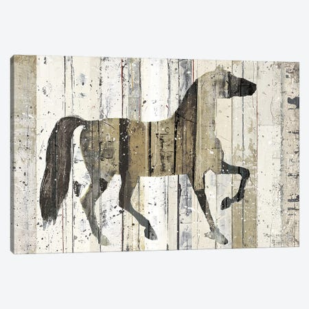 Dark Horse Canvas Print #WAC1006} by Michael Mullan Canvas Artwork