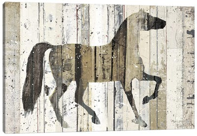 Dark Horse Canvas Art Print