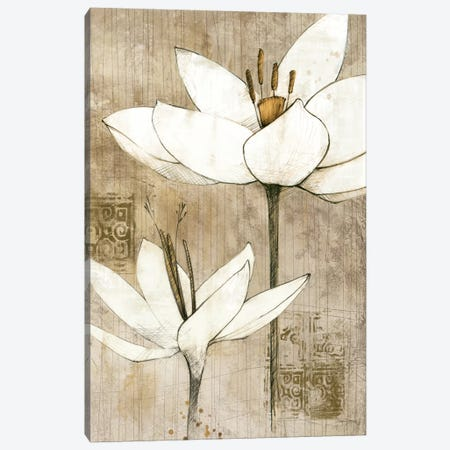 Pencil Floral I  Canvas Print #WAC101} by Avery Tillmon Canvas Print