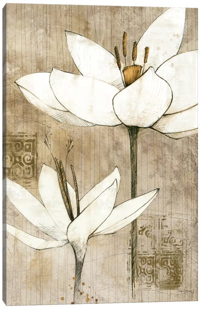 Pencil Floral I  Canvas Art Print