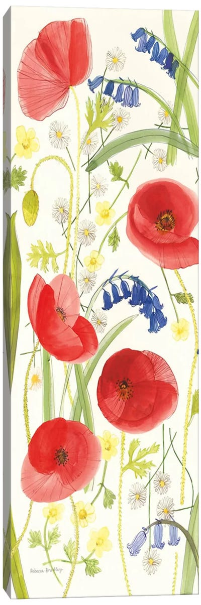 Meadow Poppies II Canvas Art Print