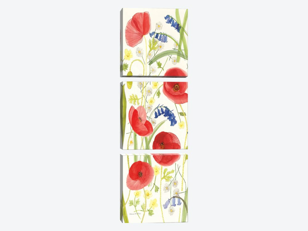 Meadow Poppies II by Rebecca Bradley 3-piece Art Print