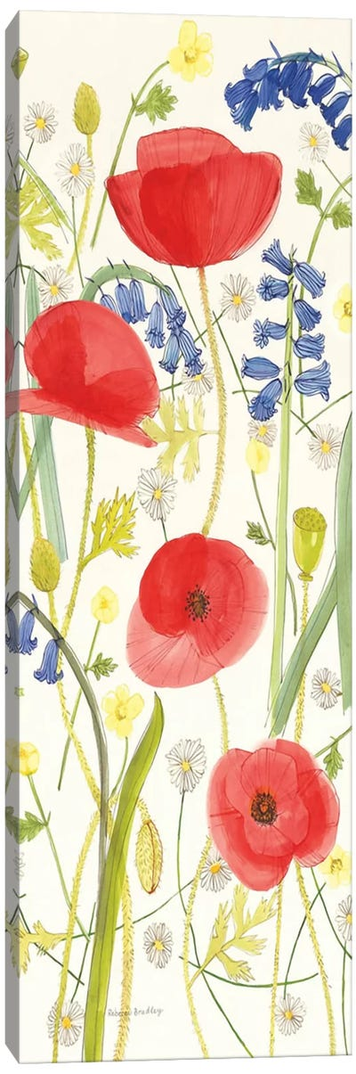 Meadow Poppies III Canvas Art Print