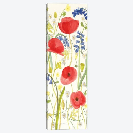 Meadow Poppies III Canvas Print #WAC1112} by Rebecca Bradley Canvas Print