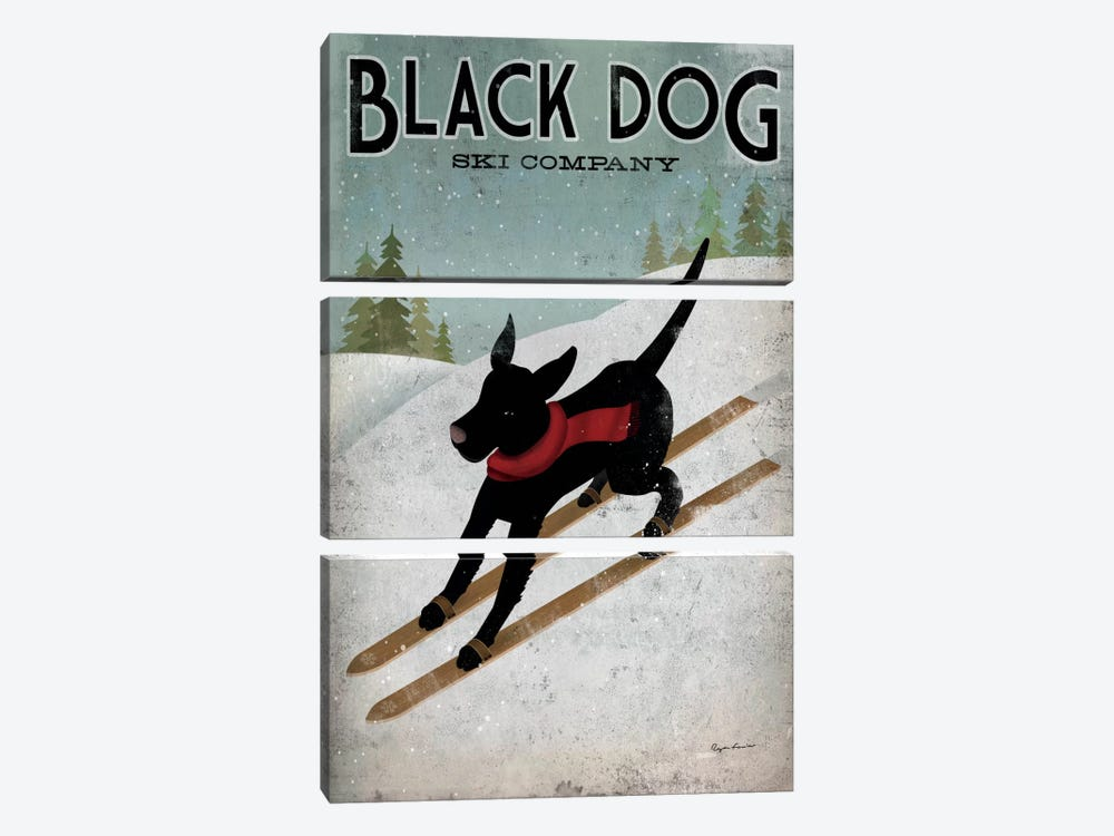 Black Dog Ski Co. I by Ryan Fowler 3-piece Canvas Artwork