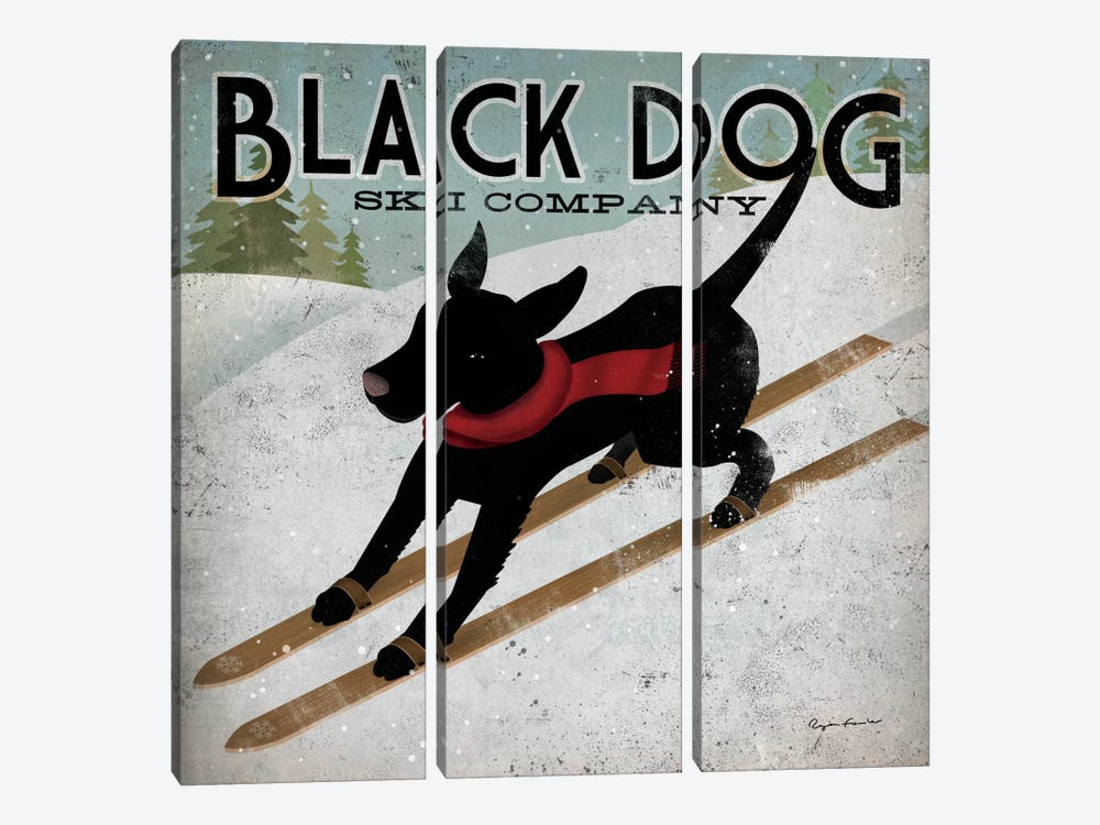 Black Dog Ski Co. II by Ryan Fowler 3-piece Canvas Art