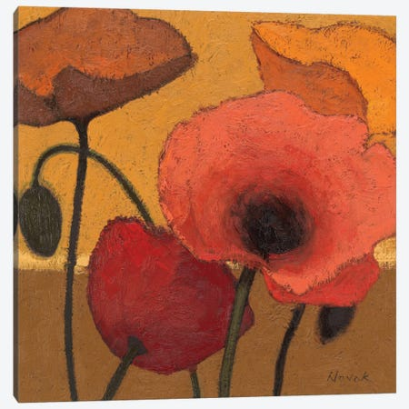 Poppy Curry I Canvas Print #WAC1162} by Shirley Novak Canvas Wall Art
