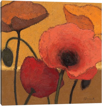 Poppy Curry I Canvas Art Print