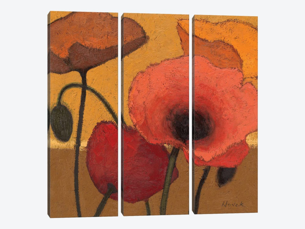 Poppy Curry I by Shirley Novak 3-piece Canvas Print