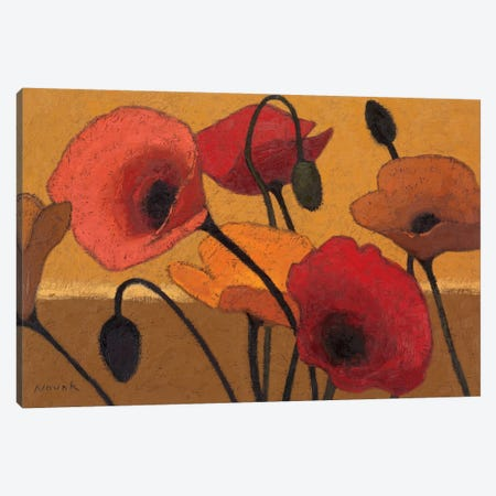 Poppy Curry III Canvas Print #WAC1164} by Shirley Novak Canvas Art Print