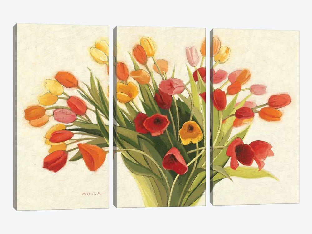 Spring Tulips by Shirley Novak 3-piece Canvas Artwork