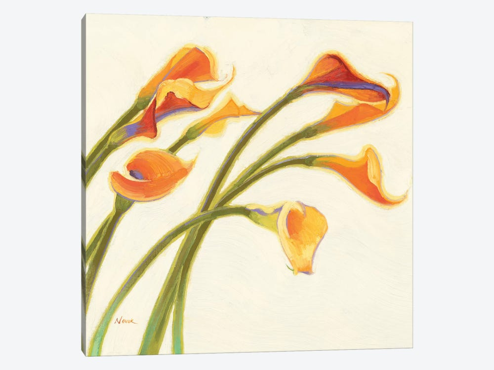 Callas in the Wind I by Shirley Novak 1-piece Art Print