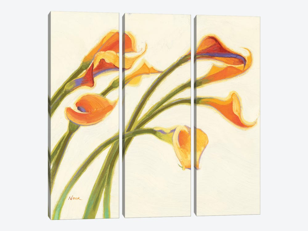 Callas in the Wind I by Shirley Novak 3-piece Canvas Print
