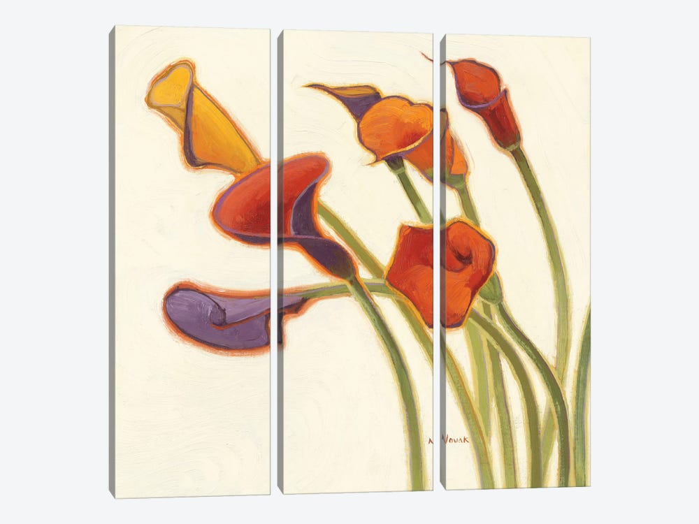 Callas in the Wind II by Shirley Novak 3-piece Canvas Art