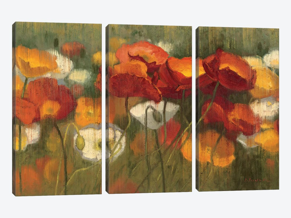 The Power of Red II by Shirley Novak 3-piece Canvas Artwork